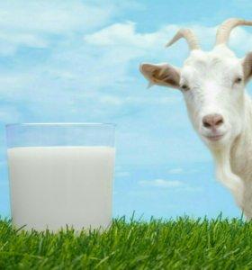 Козье молоко .