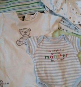 Боди детские от 0 до 6 месяцев