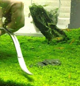 Ножницы аквариумные
