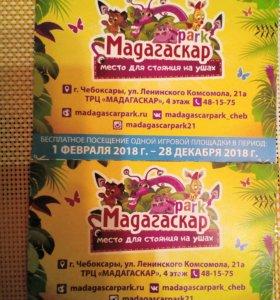 Билет в Мадагаскарпарк