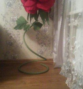 Роза ростовая