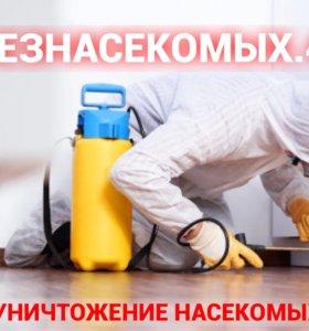 Эффективное уничтожение тараканов, клопов,муравьев