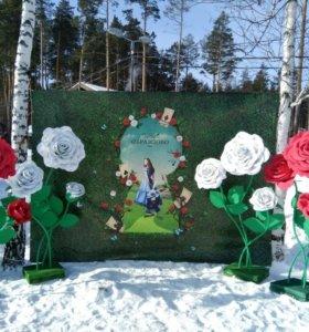 Ростовые большие цветы Роза