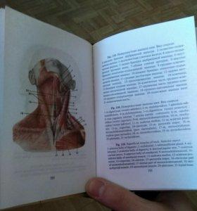 Атлас анатомии человека карманный