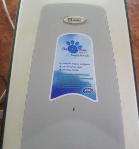 Сканер bearpaw 2448ta pro