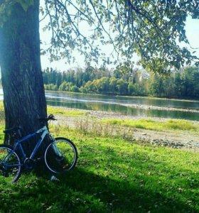 Горный велосипед Forward 1432