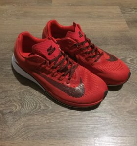 Кроссовки Nike Fly Zoom