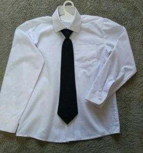 Рубашка+гастук