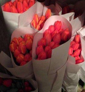тюльпаны по 75₽
