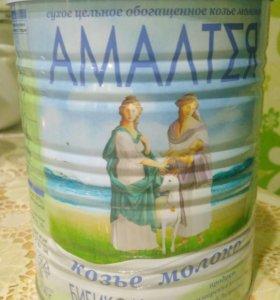 Амалтея бибиколь