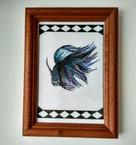 Рисунок рыбки Петушок