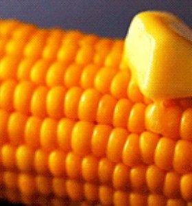 Варёная горячая кукуруза