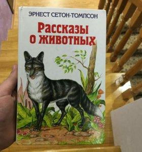 Книга (для тех, кто живет в Моздоке)