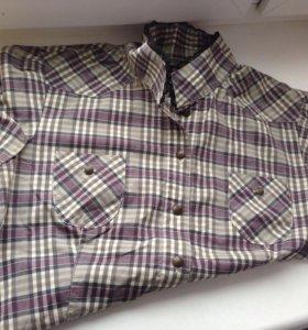 Рубашка Шотландка Mexx