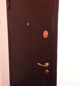 Дверь входная Торекс