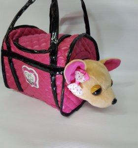 Собачка в сумочке чичилав- chi chi love