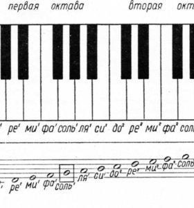 Репетитор музыкальных предметов