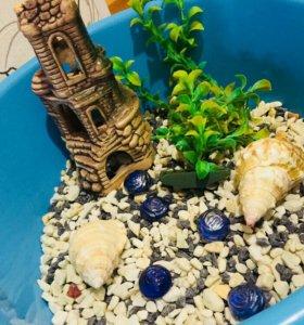 Аксессуары в аквариум