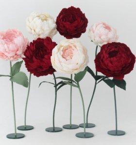 Ростовые цветы для фотосессии,праздника