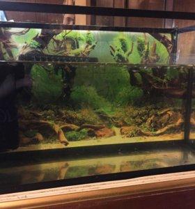 аквариум 15 л