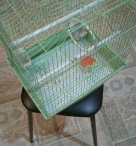 Клетка зеленая для попугая