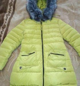 Куртки зима осень весна
