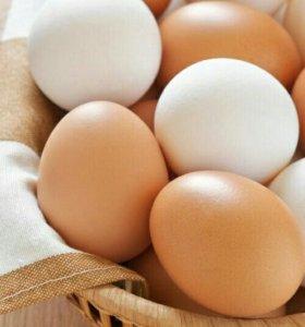 Яйцо пищевое от домашних кур с доставкой