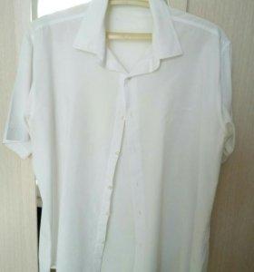 Рубашка муж.,летняя