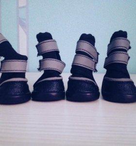 Зимние ботинки для маленькой собаки