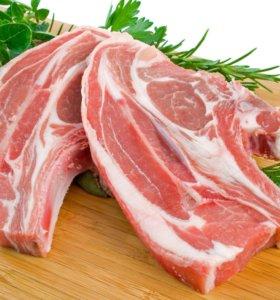 Говядина. Мясо.