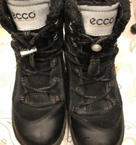 Зимние ботинки р35 экко, ecco