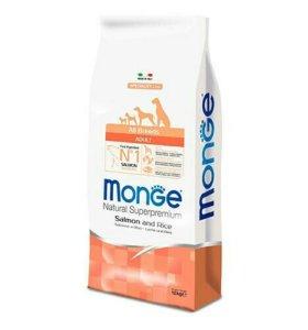 Корм для собак monge (монж) лосось и рис 12кг