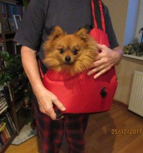 Рюкзак-переноска для животных ZOO SLING.