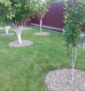 Покос травы, газон, облагораживание участка