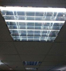 Лампы светодиодные в светильники армстронг