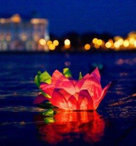 Водные фонарики Лилия 6 цветов