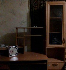 Компьютерный стол и шкаф- пенал