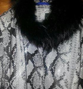 Куртка и пуховик