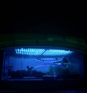 Ультрафиолетовая камера стерилизатор