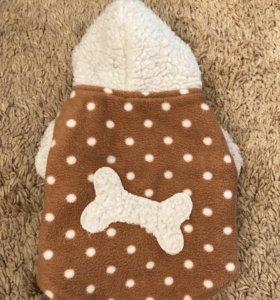 Накидка для маленькой собачки