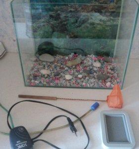 Аквариум с полным набором оборудованием и рыбки