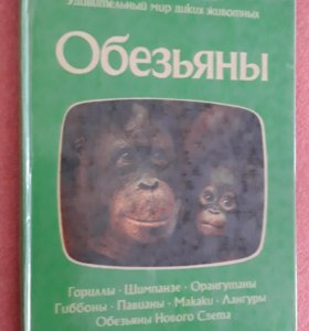 Обезьяны книга