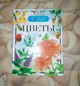 Детская энциклопедия «Цветы»