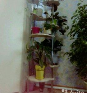 Этажерка для цветов