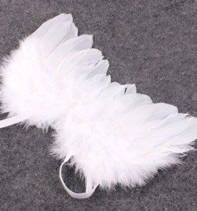 Крылья и нимб