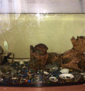 Продам аквариум вместе с рыбками