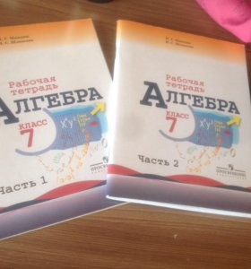Рабочие тетради по алгебре 7 класс