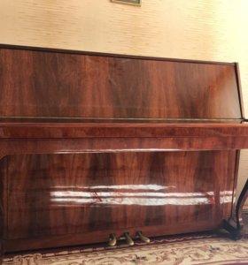 Пианино «Сюита»