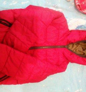 Продам куртки Весна-осень