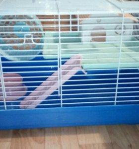 Клетка для домашних грызунов.
